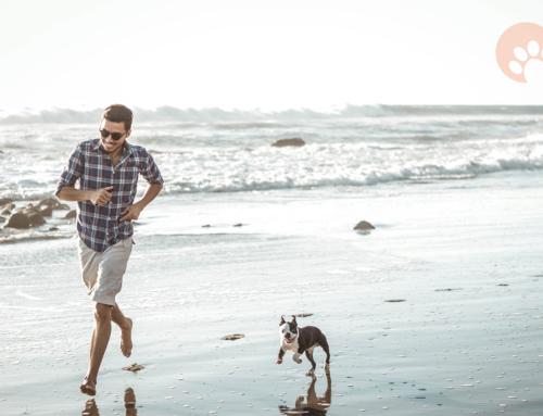 ¡Playa, sol y la mejor compañía!